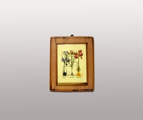 Картина ''Ботаническая серия'' в ассортименте 14х16,5 см